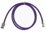 cat6_purple